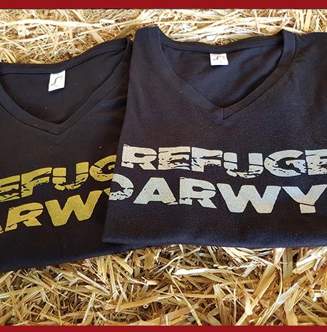 Tee-shirt Darwyn