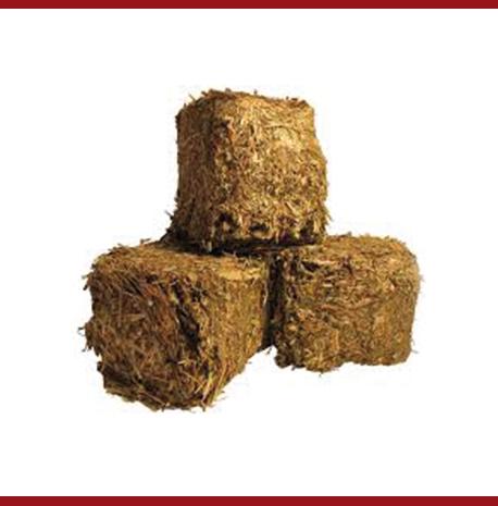 Briquettes pour 1 mois